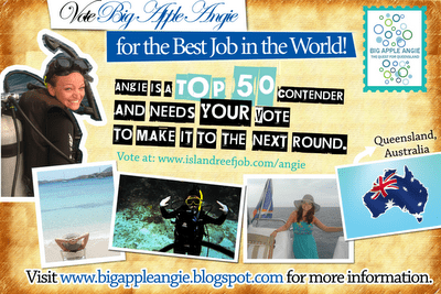 BigAppleAngie Best Job in the World Angie Orth