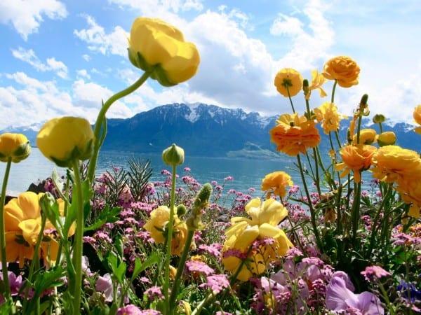 Lake Geneva in the springtime