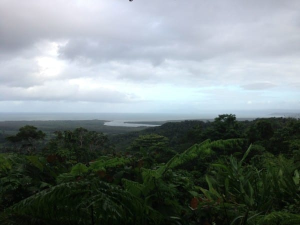 The view of the Great Barrier Reef from way up in the Daintree Rainforest