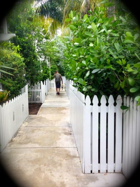 Life in the Slow Lane at Parrot Cay