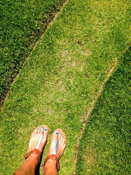 Post-pedicure wander through the resort's serenity garden