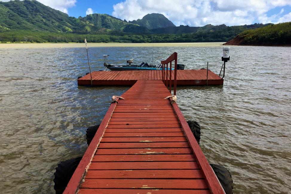Things to do in Kauai - Fishing for Peacock Bass, Waita Reservoir