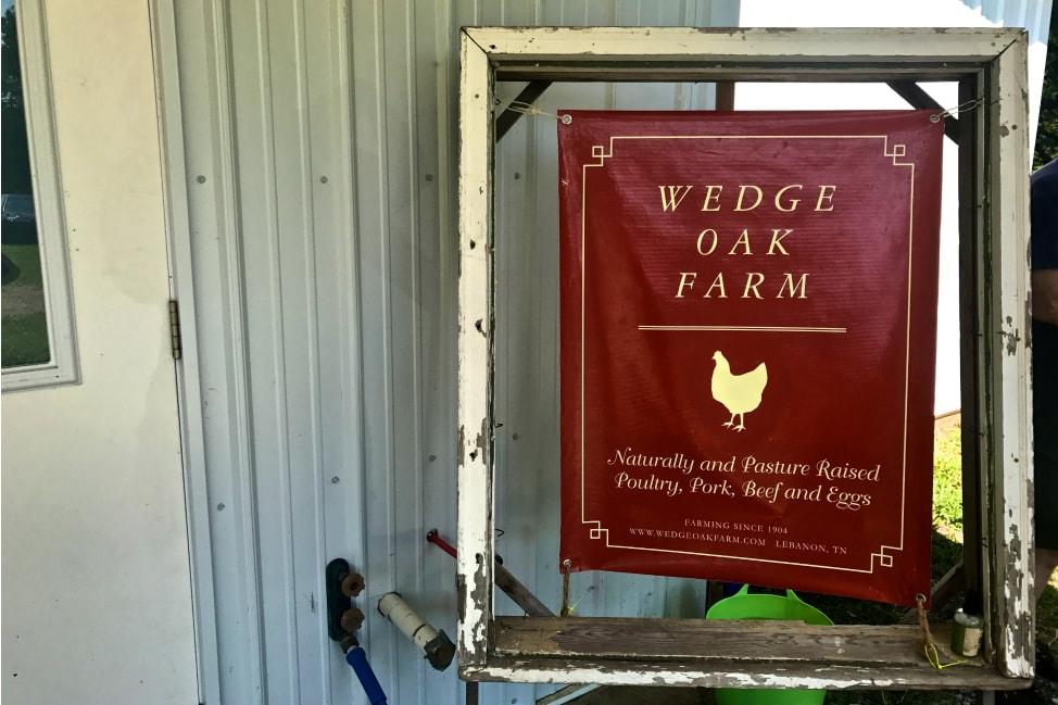 2017 Solar Eclipse Wedge Oak Farm Tennessee