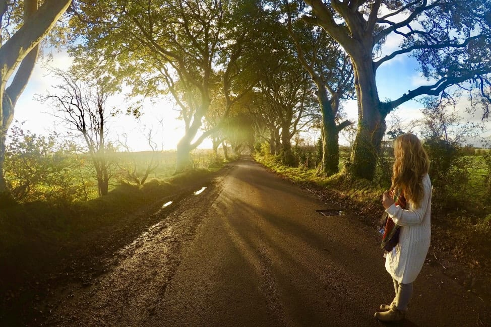 How to plan an Irish Road Trip Itinerary - Dark Hedges, Northern Ireland