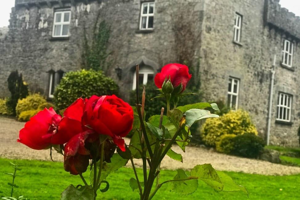 Fanningstown Castle