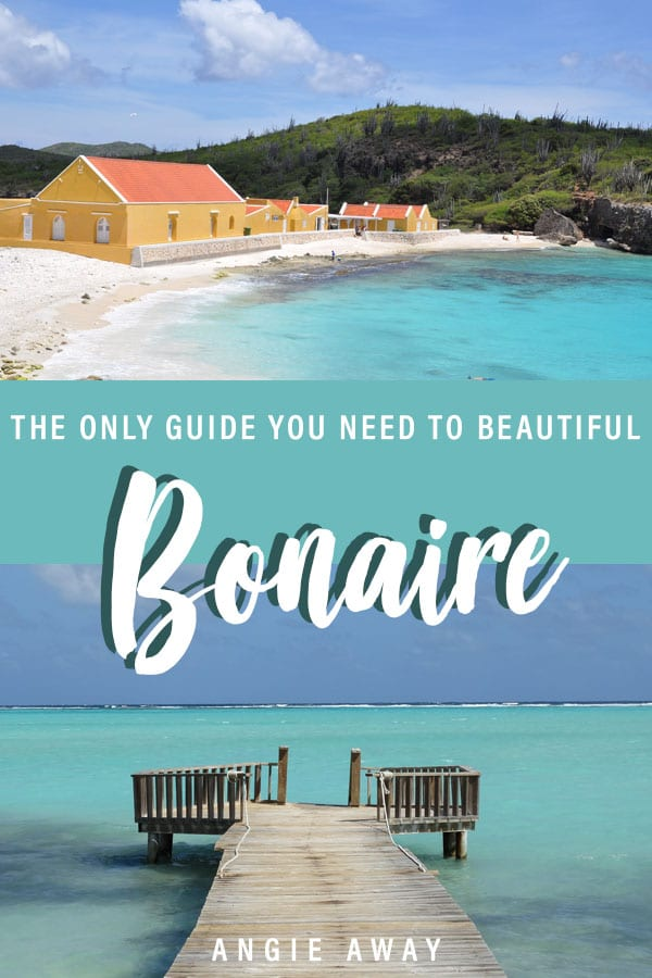 Looking for things to do in Bonaire? Whether you're wanting to spend a few days diving, snorkeling or soaking up the sun, there's plenty of activities on this island! Check it out!