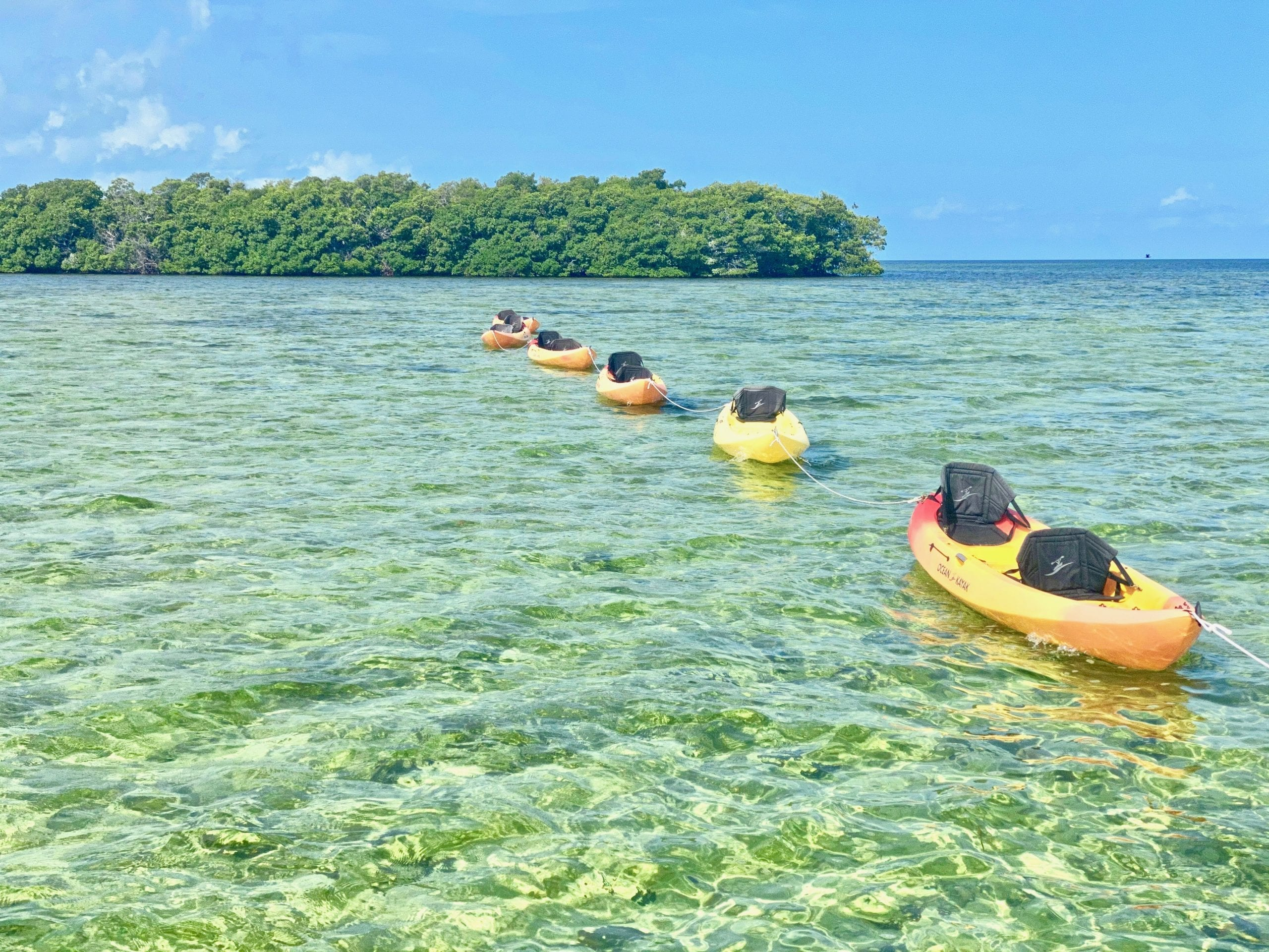 Key West HonestEco Kayaking Tour