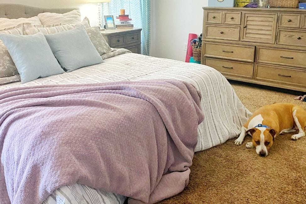 A Grown Up Bed: Our Purple Mattress Review thumbnail